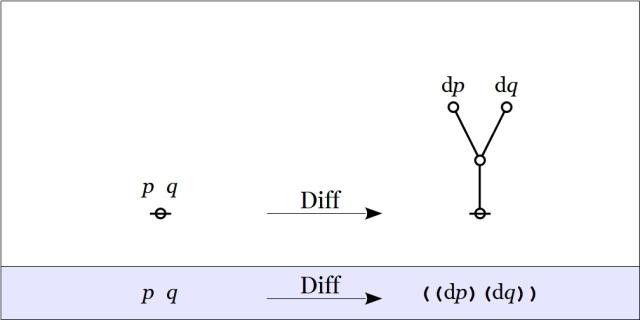 Cactus Graph pq Diff ((dp)(dq))